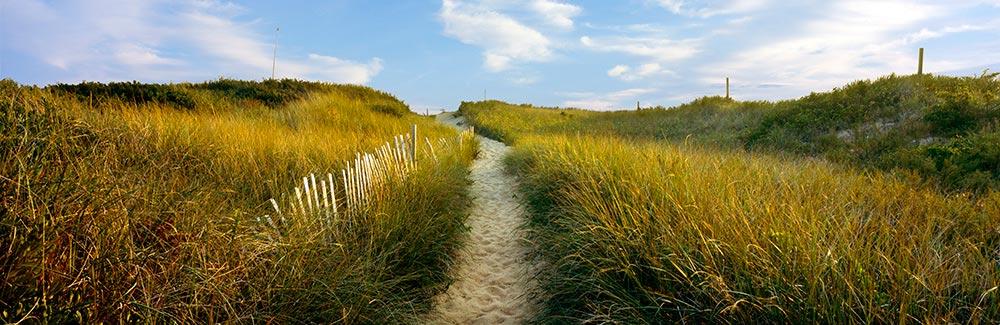 Path to the National Seashore, Wellfleet
