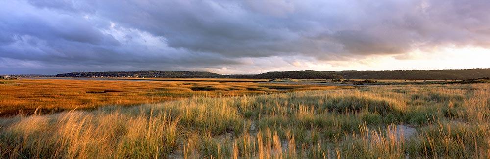 South River Marsh