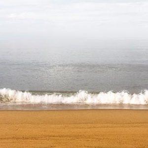 Chatham Surf